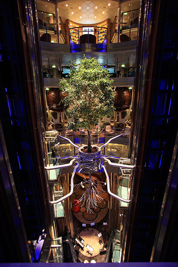 Celebrity Reflection Atrium Tree