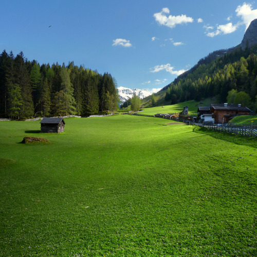 f0rbidden-forest:  The Rauris valley shaped by lush green Alpine meadows. by B℮n on Flickr.
