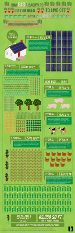 emergentfutures:  Infographic: How big a backyard would you need to live off the land?     Graphic illustrates how much backyard square footage would be needed to feed a family of 4 a well-rounded diet of meat, dairy, eggs, wheat, fruits and veggies for a year. Not surprisingly, it's a lot.  Full Story: MNN    Thinking about this when pondering around urbanization and the future of cities is really important…