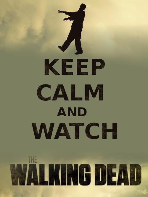 lukko:  ~Keep calm and watch The Walking Dead ~  hm hm