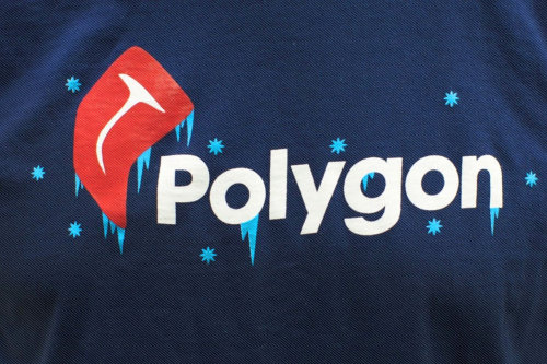 thisistheverge:  Welcome to Polygon! It's a website (finally) | Polygon Officially welcome our friends at Polygon to the internet!  Fuck Yeah!