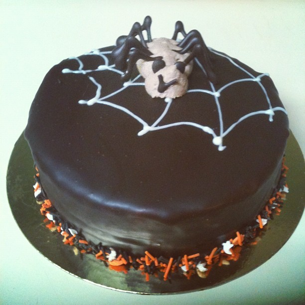 Hates spiders/loves chocolate cake. #halloween