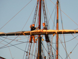 swordwhale:  aloft on Privateer Lynx (a reproduction of the 1812 privateers), Downrigging Weekend, Chestertown MD