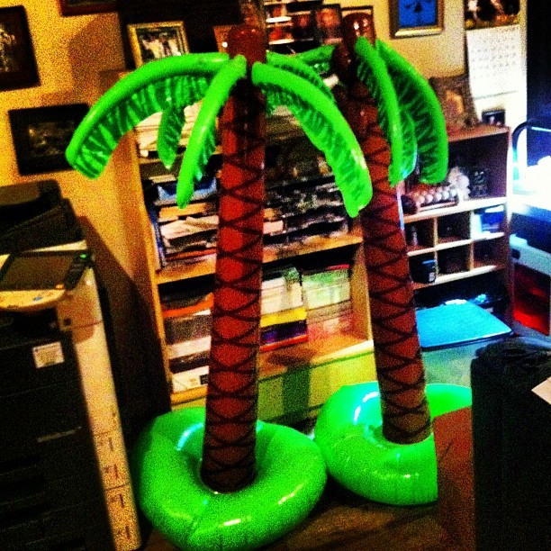 My mom and I had a contest blowing up these inflatable palm trees.   Asthma boy won!!