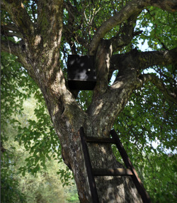 Small black box,tiny interactive installation on apple tree in Dolina Służewiecka park,inspired by the history of this place: residues of  small wooden houses, private vegetable gardens, furniture and belongings scattered around semi natural landscape,client: Stowarzyszenie Odblokuj , M3 project, help: Piotr Fryc.