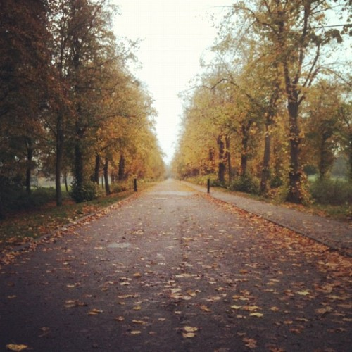 #autumn (at Trent Park)