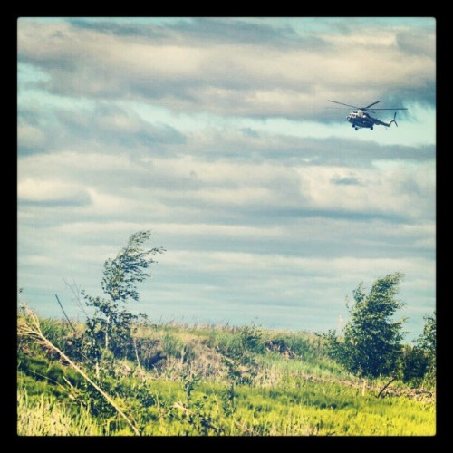Helicopter #helicopter #tundra #summer #tree #aviation #flight #wind #russia #imageoftheday #picoftheday #imageoftheday #