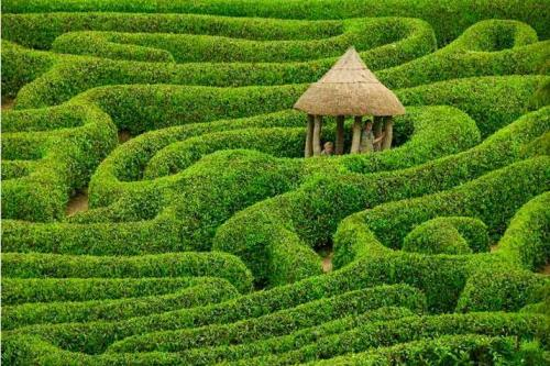 "England""Lost in a wending laurel maze at Cornwall's Glendurgan. By Bob Krist"