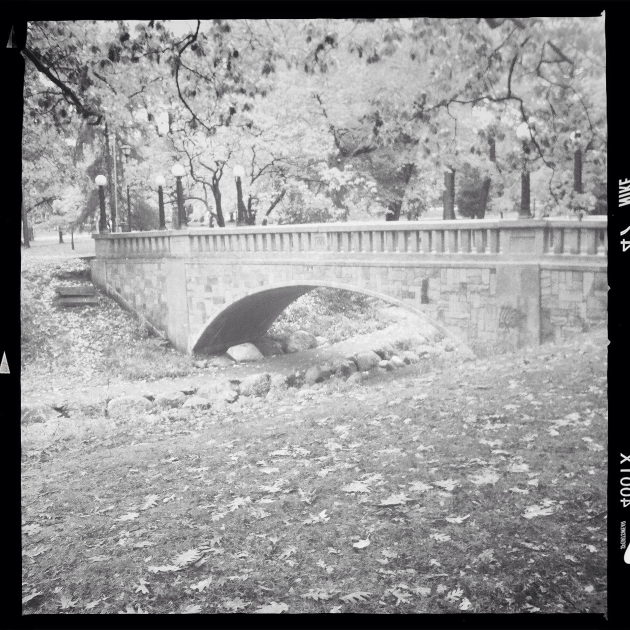 Deering Oaks Park bridge on a fall day