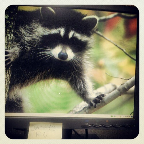 Look who's coming out of my monitor!!