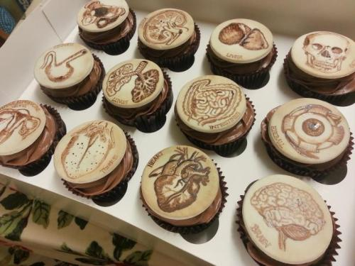 isetthetone:  Eat Your heart Out anatomically correct baked goods (via Boing Boing).  Wow.