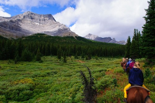 matadornetwork:  Jeff Bartlett goes horseback riding in Banff… and joins a wolf pack?!? Check out his story here: http://bit.ly/RYm5sT.