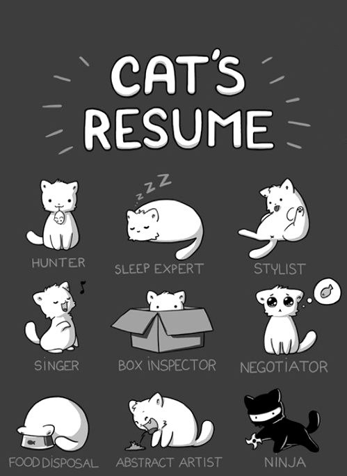 thedailywhat:  Cat's Resume of the Day: Quite the jack of all trades, isn't he? [frogman]