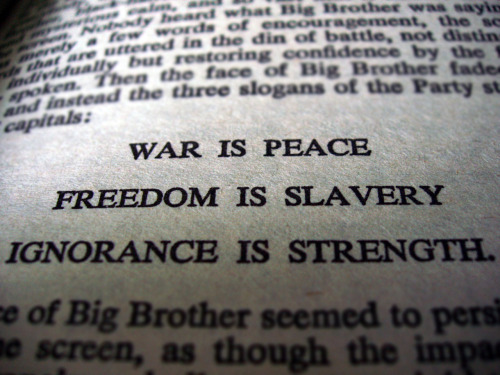 "gonnatellyou:  reading ""1984"" by george orwell"