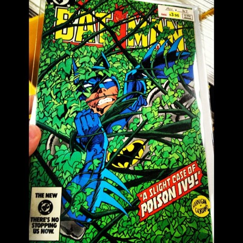 #BackIssueBrowsing #Batman #367 A Slight Case of #PoisonIvy! #DC #Comics #tdkr #DarkKnight
