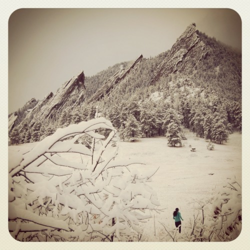 scottjurek:  Le Flatiron draped with our first major snowfall of the year. Step aside fall!  Chautauqua Park, Boulder, CO      It started snowing here today! Super excited. :)