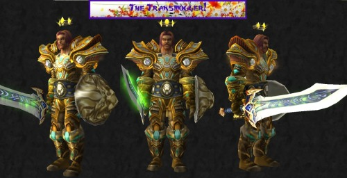 thetransmogger:  I am Paladin! Head: Vengeful Gladiator's Lamellar Helm or level 70 PVE Equivalent. Chest:Valorous Redemption Tunic Shoulders: Swiftsteel Shoulders Cloak: Wrap of the Great Turtle Gloves: Valorous Redemption Gloves Belt:Titan-Forged Girdle of Salvation Legs: Valorous Redemption Greaves Feet: Poignant Sabatons Shield: Kings Bulwark Weapon: Gleaming Quel'Serrar Set: http://www.wowhead.com/compare?items=40579:40575:40572:32570:33697:46071:49303:25624:62383:40187