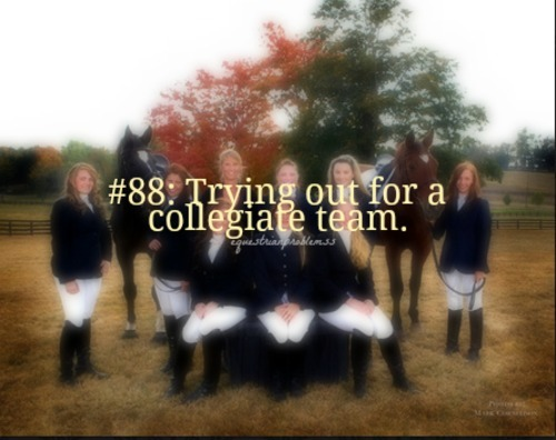 Equestrian Problem #88 Submitted by: mgb