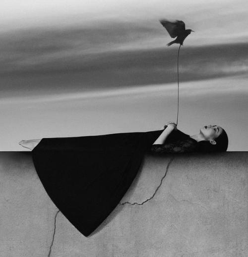 gryulich:  'Destiny' Photography by Noell S. Oszvald