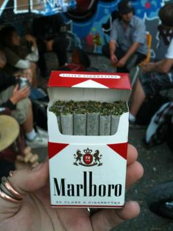 "the-daily-stoner:  Class A ""Cigarettes"""