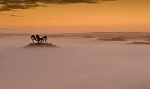 Colmers Hill by Mark A Jones * on Flickr.