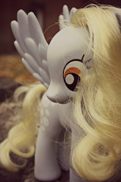 phoc0re:  Derpy went for a photoshoot.