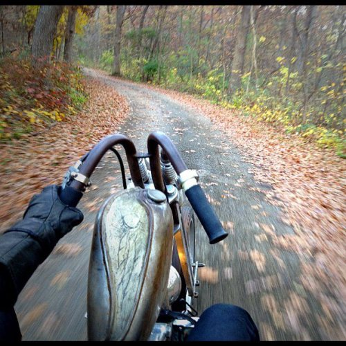 Riding through the fall leaves by Josh Kurpius.
