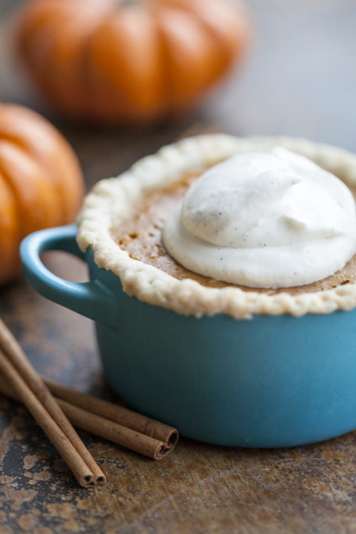 mini individual pumpkin pies with vanilla whip cream