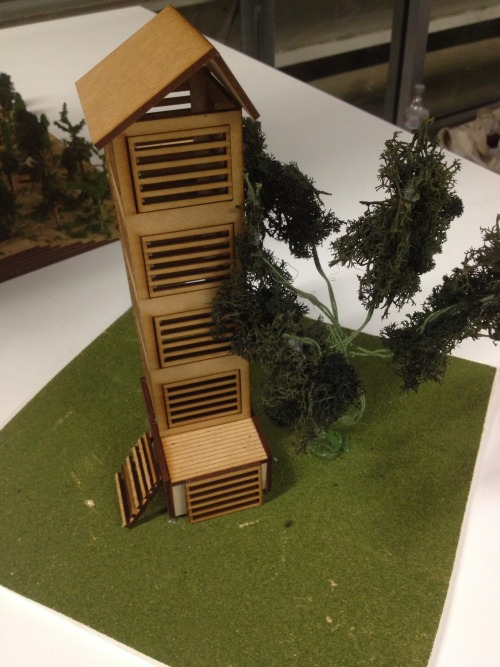 Woodford Cabin and Precinct Proposal Lazer-cut model QUB / QUT design