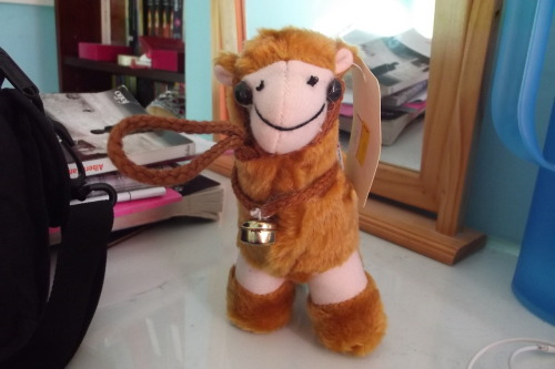 My mum promised to bring me back a camel from Egypt and this is what I get…