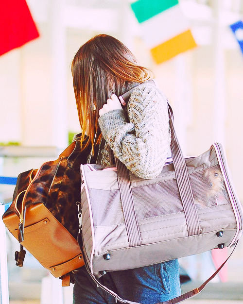Leighton Meester, January 25 2011, @ LAX