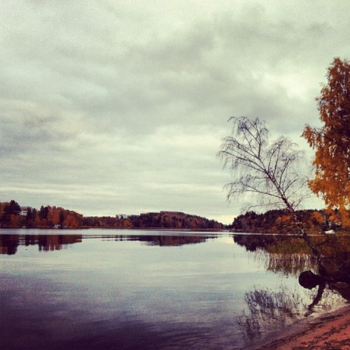 #stockholm #sweden #travel #autumn #visitsweden  (at Ulriksdals Slottspark)