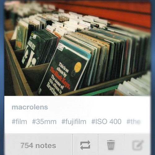 754 notes so far…  #macrolens #tumblr #records #theblackkeys #music #vinyl #art www.macrolens.tumblr.com