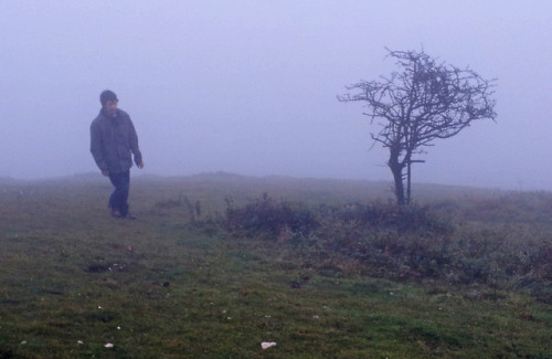Day 656 - A Walk in the Fog on Flickr.15/10/12 - Apparently the view from the top of St Boniface Down is amazing, I shall have to revisit on a nice day to believe it. http://highestpoints.blogspot.co.uk/