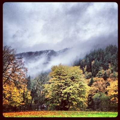 #issaquah #fall #seattle