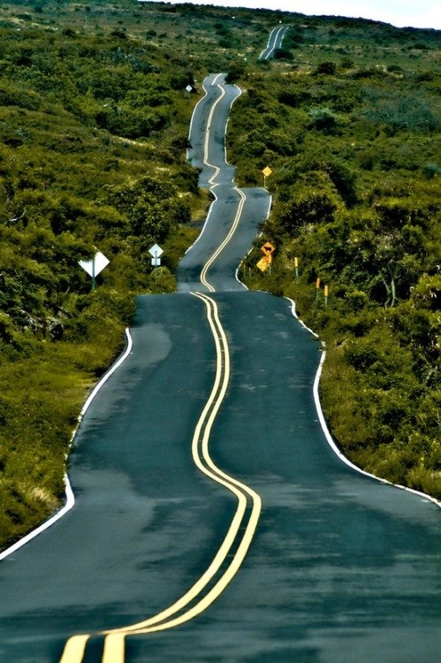 Drunken Highway, Santa Fe, New Mexico, USA via: designelements : cabbagerose