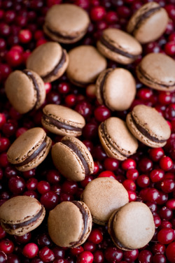wehavethemunchies:  Chocolare cranberry macarons (by The Little Squirrel)