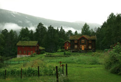 (My photo) Norwegian Organic Farm by ~Navanna