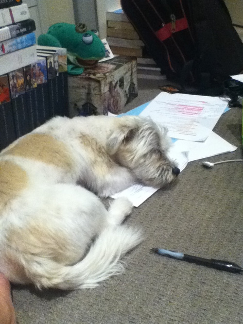 But I can't study if it means waking him up. It's just not fair.