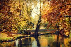 autumn pond by ~ANONYMOUSlovesMARVEL
