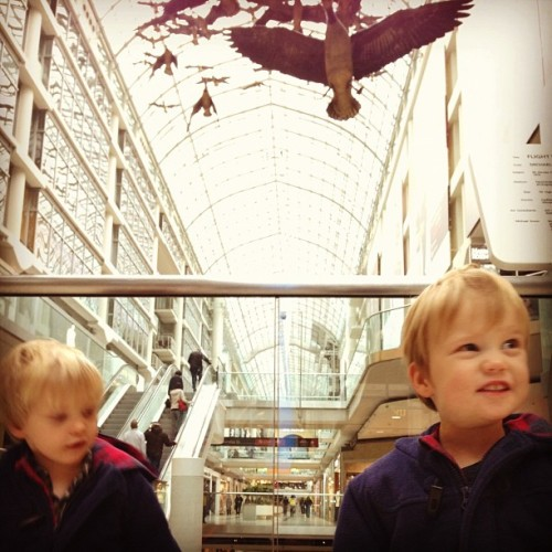 Will not stand still. (at Toronto Eaton Centre)