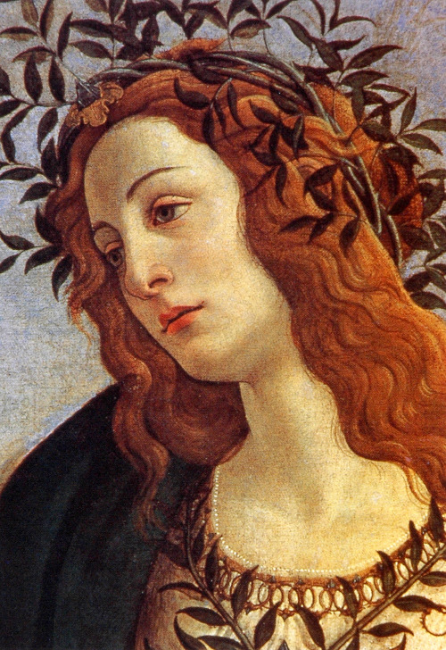 Minerva and the Centaur, Botticelli (Detail)