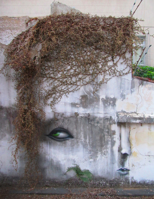 (via Juxtapoz Magazine - The Work of Andre Muniz Gonzaga | Street Art)