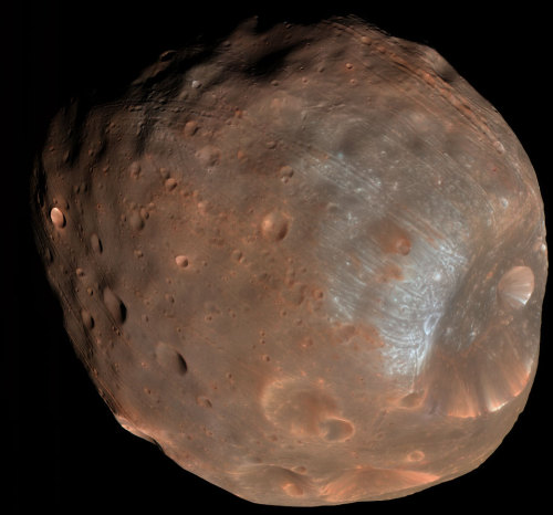 ikenbot:  Phobos: Doomed Moon of Mars  This moon is doomed. Mars, the red planet named for the Roman god of war, has two tiny moons, Phobos and Deimos, whose names are derived from the Greek for Fear and Panic.  These martian moons may well be captured asteroids originating in the main asteroid belt between Mars and Jupiter or perhaps from even more distant reaches of the Solar System. The larger moon, Phobos, is indeed seen to be a cratered, asteroid-like object in this stunning color image from the Mars Reconnaissance Orbiter, recorded at a resolution of about seven meters per pixel.  But Phobos orbits so close to Mars - about 5,800 kilometers above the surface compared to 400,000 kilometers for our Moon - that gravitational tidal forces are dragging it down. In 100 million years or so Phobos will likely be shattered by stress caused by the relentless tidal forces, the debris forming a decaying ring around Mars.
