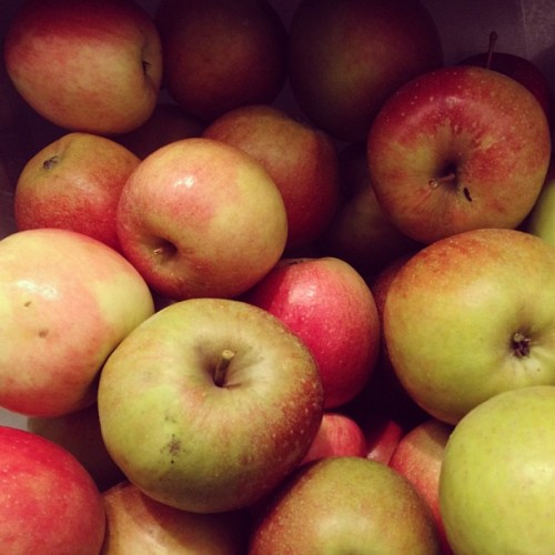 Half bushel of baldwins and braeburns. Yes, I like apples.