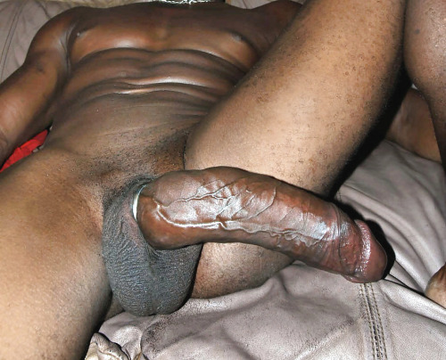 Pictures Of Giant Black Gay Cock 11