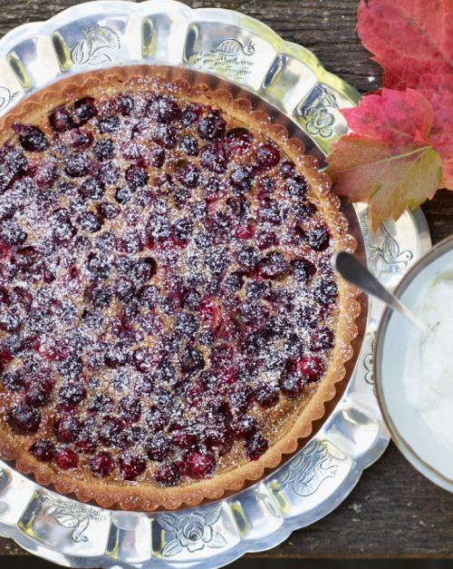 © Fredrika Stjärne Brown Sugar-Cranberry Tart Recipe Contributed by David Tanis Click here for full recipe