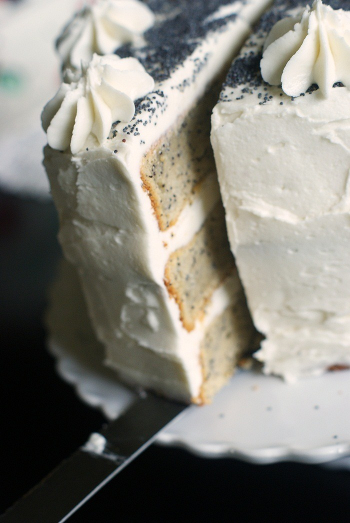 gastrogirl:  spiced poppy seed cake with almond buttercream frosting.