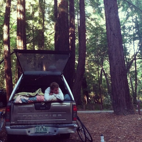mountainsmoonsandredwoods:  Sleeping amongst the Redwoods. #truck #camping