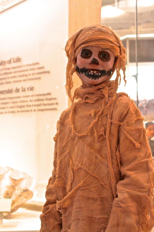 Mummy Boy. This kid won Halloween Day @ROMToronto. My only regret is that we didn't get this photo taken up in Ancient Egypt.